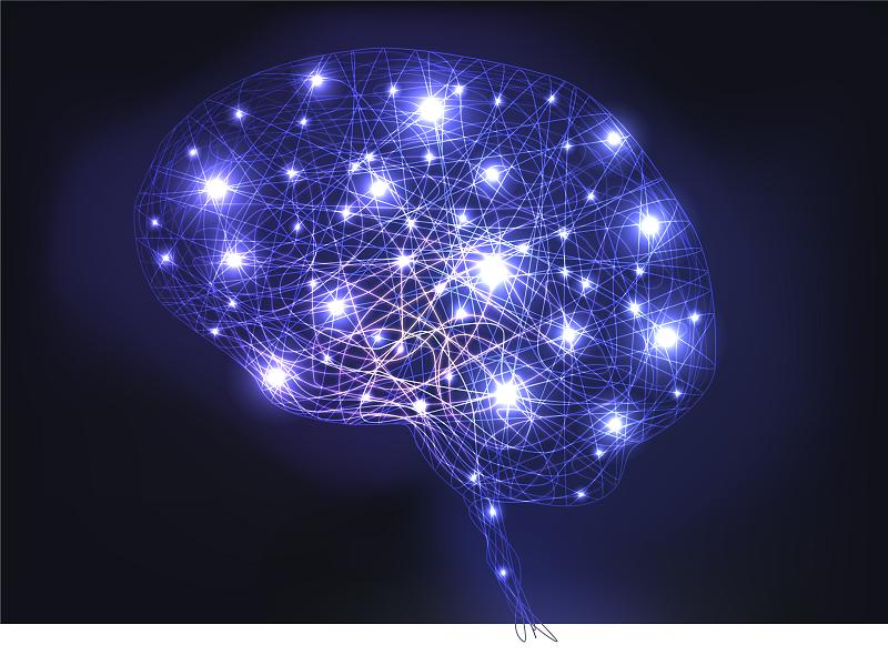 Les Neurosciences et le management